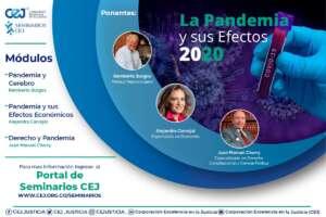 La Pandemia y sus Efectos